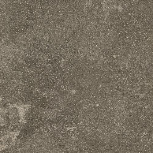 raglu24x02p-001-tile-lunar_rag-grey_taupe_greige-uniform_1217.jpg
