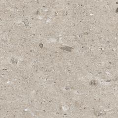 coemo24x02pl-001-tile-moonstone_coe-taupe_greige_beige-beige_89.jpg
