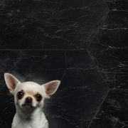 tile-bigmud_mud-008-1115-contemporary-black_inspiration.jpg